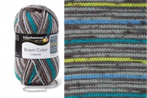 SMC BRAVO COLOR 2109